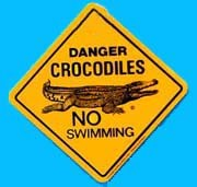 Large Roadsign Crocodile