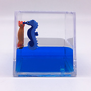 Paperweight Cube with Seahorse Floaters