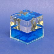 Paperweight Cube Dolphin