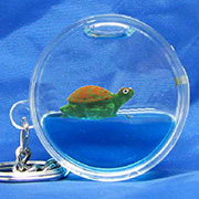ROUND KEYRING, TURTLE FLOATER