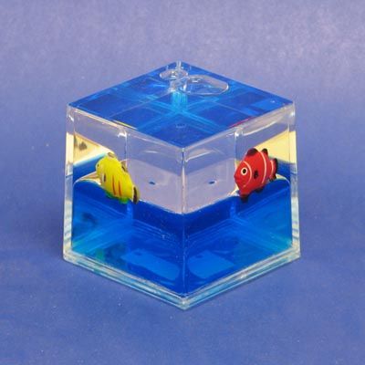 Paperweight Cube Fish