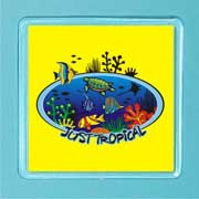 Acrylic Magnet Tropical Reef