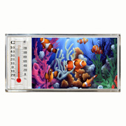 3D Thermometer Magnet Clown Fish/Reef