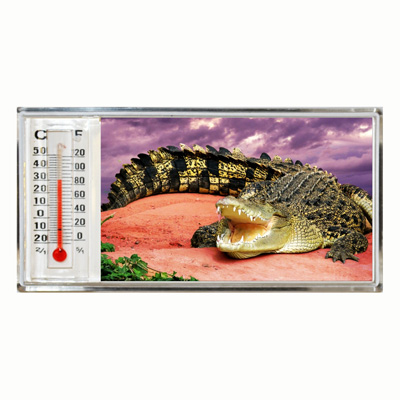 3D Thermometer Magnet Crocodile