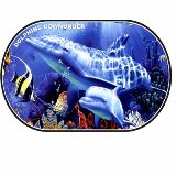 Dolphins Downunder Placemat