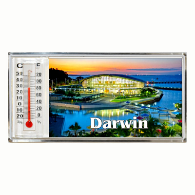 3D Thermometer Magnet Darwin