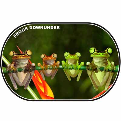 Frogs Downunder Placemat