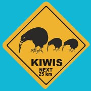 Suction Roadsign Kiwi