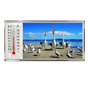 3D Thermometer Magnet Pelican