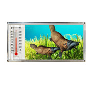 3D Thermometer Magnet Plytapus