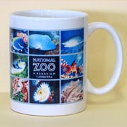 Sublimation Photo Mugs