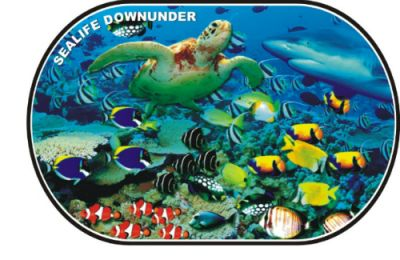 Sealife Downunder Placemat