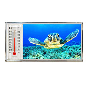 3D Thermometer Magnet Turtle
