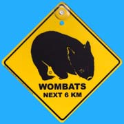 Suction Roadsign Wombat